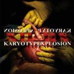 Karyotypexplosion